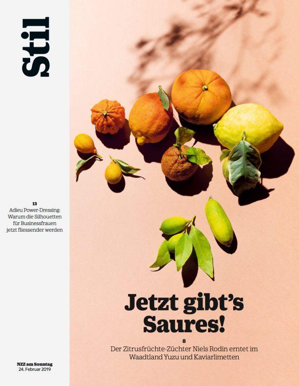 Niels Rodin for NZZ Stil Magazine